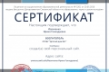 Сертификат проекта infourok.ru №2094375